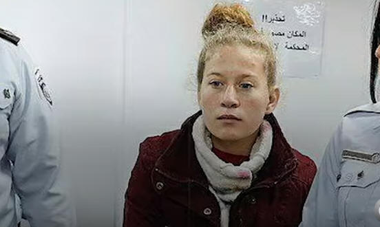 ahedtamimi